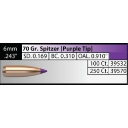 Nosler 70gr Ballistic Tip Hunting Bullets 6mm  (250pack)
